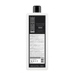 Shampoing concentré Super 1L Ducastel Pro abricot